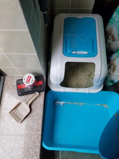 快美特(CARMATE)消臭博士 汽车家居除臭杀菌新车空调除味空气净化剂CDR91 晒单图