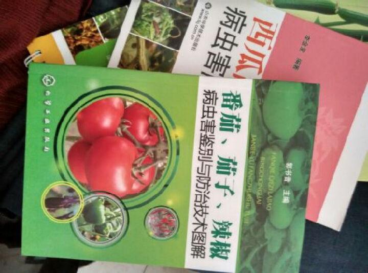 番茄、茄子、辣椒病虫害鉴别与防治技术图解 晒单图