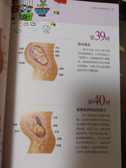 怀孕育儿圣经 晒单图