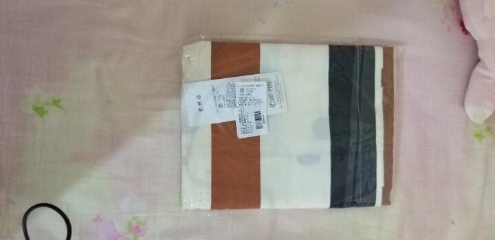 九洲鹿 枕套家纺 全棉枕套 斜纹枕头套枕芯套 裸婚时代 一对装 48*74cm 晒单图
