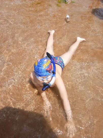 TOPIS防雾平光/近视潜水镜 浮潜三宝套装 全干式呼吸管+潜水面镜 男女冲浪装备浮浅用品 M2011+S207宝石蓝 晒单图