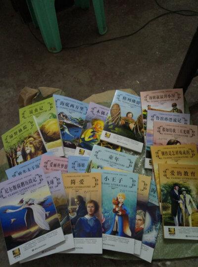 二年级课外书 小学生经典名著阅读套装20册彩图注音版儿童文学图书7-10岁绿野仙踪 小王子 晒单图