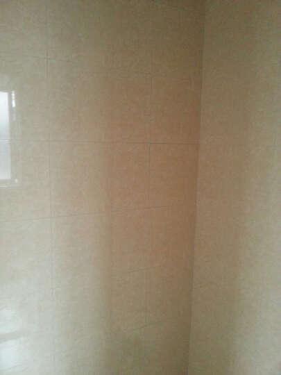 马可波罗瓷砖厨房卫生间墙砖浴室砖阳台釉面砖经典纹理现代简约风樱花米黄M45003 M45003A8腰线(97*300)) 300*450 晒单图