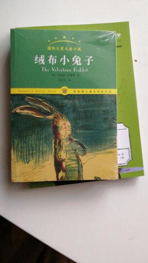 绒布小兔子/国际大奖儿童小说 晒单图