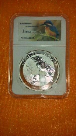 丝绸之路封装币-2016年澳大利亚翠鸟银币1盎司纯银 银币 纪念币外国银币 晒单图