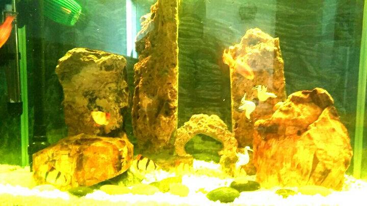意牌鱼缸灯led灯水族箱灯潜水灯水族渔缸照明灯设备LED灯管草缸水草灯45红色遥控变色 红色 长18cm(适合20-30cm小缸) 晒单图