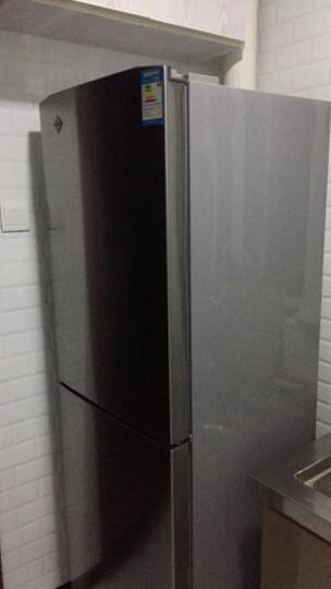 格力(KINGHOME)晶弘 256升双门冰箱 四大冷冻抽屉 节能静音 格力晶弘 BCD-256CL(拉丝银) 晒单图