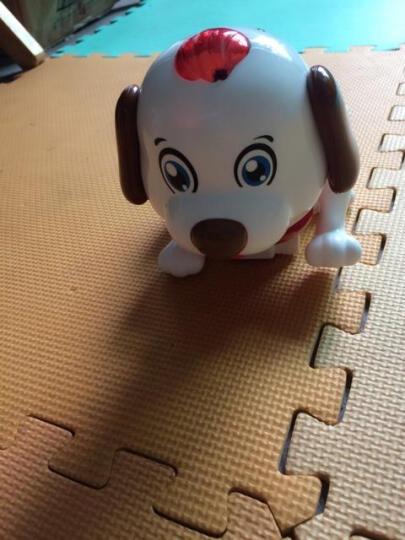 高盛      笨笨狗电动智能小宠物唱歌跳舞电子感应机器狗婴儿益智爬行启蒙狗0-3岁宝宝 遥控斑斑狗 另加充电套装 晒单图