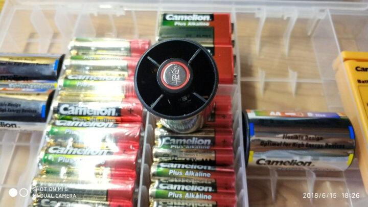飞狮(Camelion)碱性电池 干电池 6LR61/9V/9伏 电池 6节 万用表/烟雾报警器/话筒/麦克风/医疗仪器 晒单图