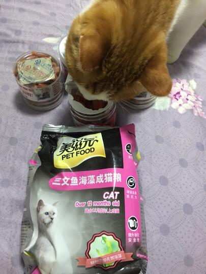 美滋元 宠物猫粮 三文鱼海藻成猫猫粮500g 晒单图