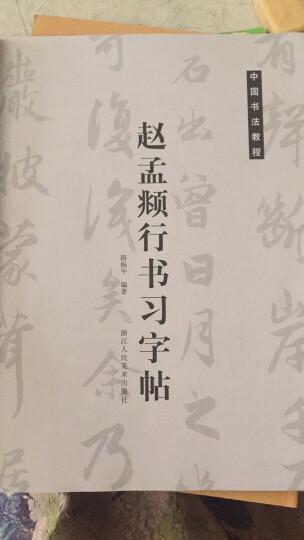 中国书法教程:赵孟頫行书习字帖 晒单图