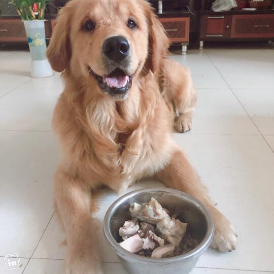 伯纳天纯 (Pure&Natural)宠物狗粮中大型犬成年犬狗粮健胃促吸收15kg口感升级 晒单图