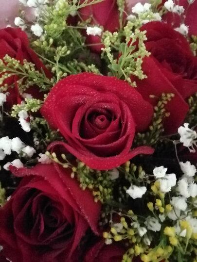 花美家 生日鲜花 11朵红玫瑰花 鲜花速递 同城送花 蓝色妖姬花束礼盒全国花店配送北京上海 【主推-送女友】11朵红玫瑰花束 平日价 晒单图