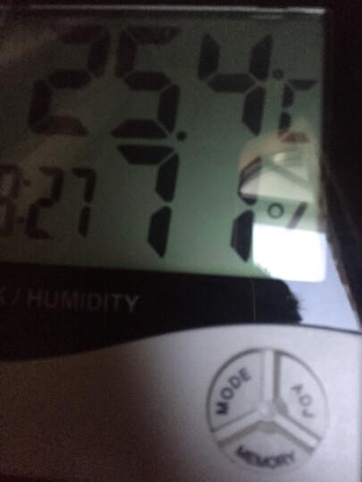 探戈(TANGO)电子温度计多功能日历时钟闹钟 办公桌面电子时钟 语音报时 夜光自动感应 白色 晒单图