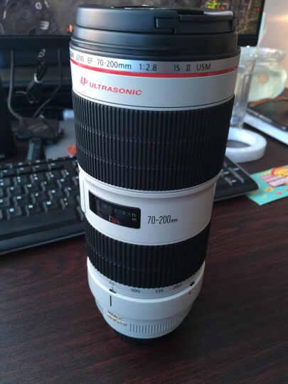 佳能(Canon)微距镜头 EF-S 60mm f/2.8 USM 晒单图