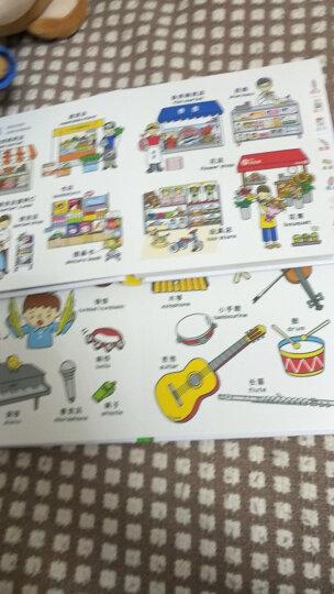 0-4岁幼儿认知小百科 中英双语 精装版 套装共3册 儿童启蒙益智 英语科普百科绘本图书 晒单图
