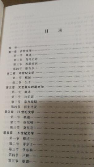 外国文学史(欧美卷)(第五版)/经典南开·文学教材系列 晒单图