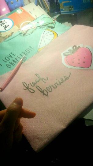 栢利图(BOLEITUN) A4手提牛津帆布文件袋 韩国学生卡通可爱小清新拉链收纳资料包 A5菲尔果园草莓 晒单图