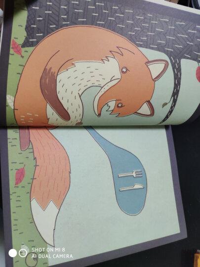 海豚绘本花园:狐狸先生的宴会 晒单图