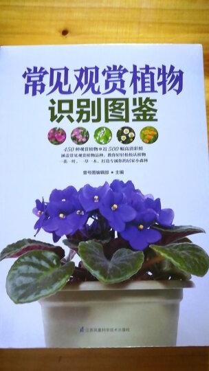 常见观赏植物识别图鉴 晒单图