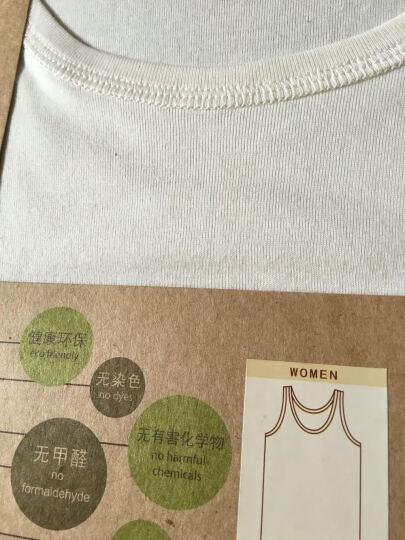 素道天然有机棉背心 女士背心薄款 打底百搭无染色漂白 亲肤舒适 本白色 165/L 晒单图