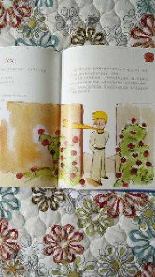 小王子3D立体书 法国经典童话  晒单图