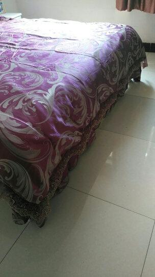 摩天轮家纺 水晶绒四件套加厚法兰绒6D雕花绒 珊瑚绒被套冬季套件保暖床上用品 叶之舞  灰 被套220*240cm适用于1.8米/2米床 晒单图