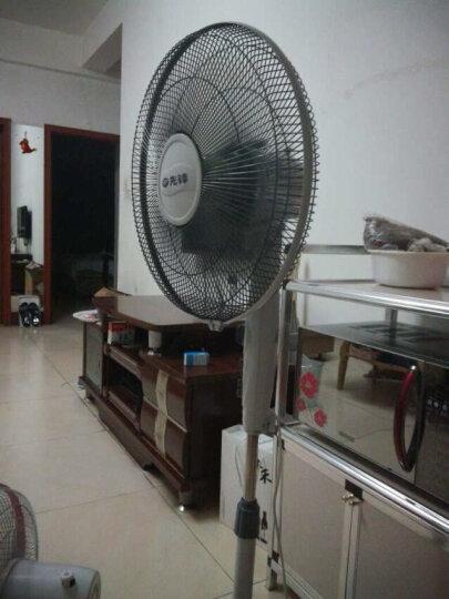 先锋(Singfun)电风扇/落地扇/风扇/大风量/一级能效/DD1101 晒单图