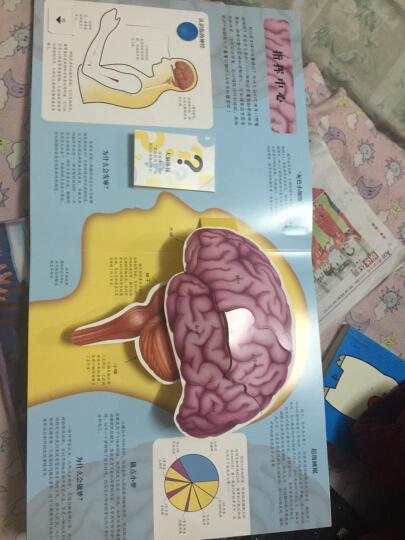 趣味科普立体书:人体 晒单图