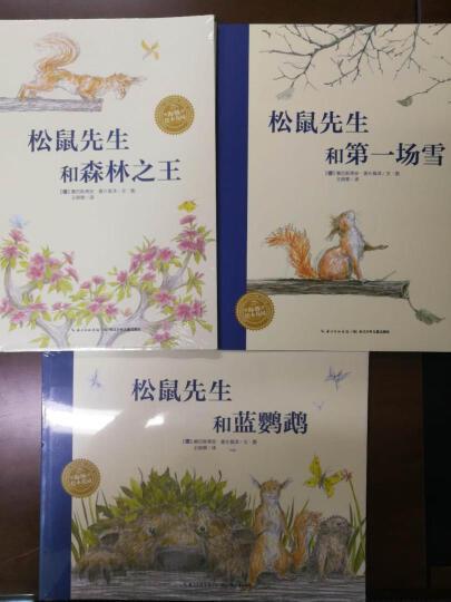 阶梯数学思维训练 数学启蒙 幼小衔接阶梯教程2-3岁(全4册)真果果出品 晒单图