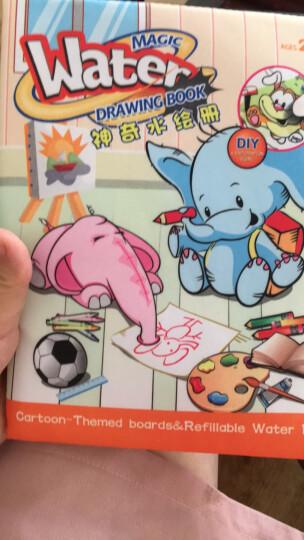 儿童玩具水布画 大号防水-卡通恐龙 晒单图