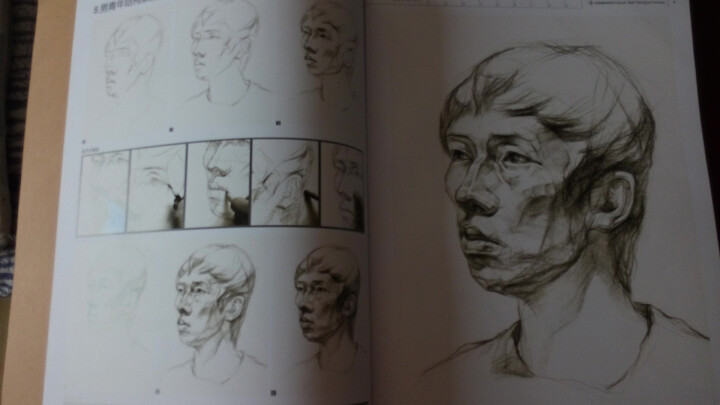 人物头像结构素描范本:结构素描范本(黄金典藏版) 晒单图