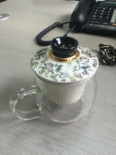 一园茶具 陶瓷内胆茶杯 玻璃水杯子 花茶杯 带滤芯杯盖450ml大容量 圆园杯 樱花雪月圆园杯 晒单图
