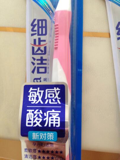 狮王(Lion)细齿洁抗敏牙刷(新老包装、颜色随机发放) 晒单图