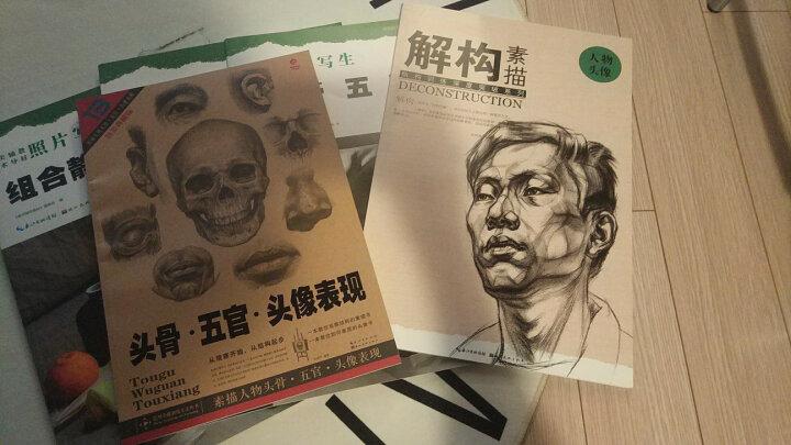造型基础训练方法丛书:素描人物头骨·五官·头像表现(黄金典藏版) 晒单图