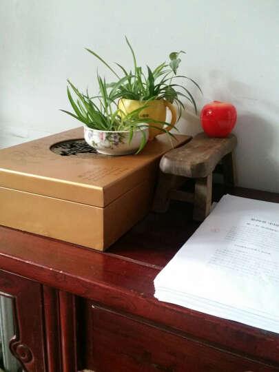 慧乐家L80单人实木折叠床 简易松木硬板床 33050-1 晒单图