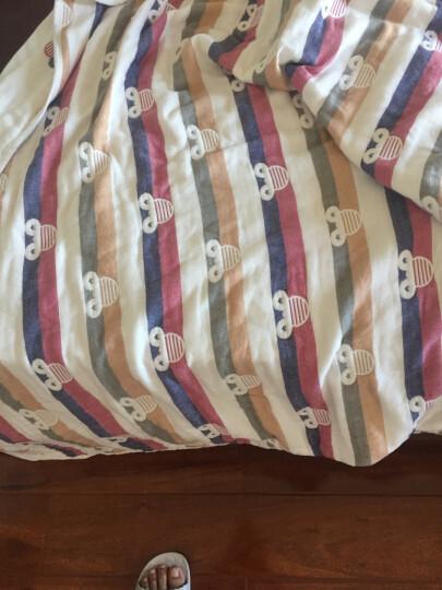 维尔凯毛巾被纯棉 全棉色织提花针织毯子 加厚夏凉被盖毯 儿童成人午睡沙发毯1.5米 2米办公室休闲毯 云朵-蓝(6层纱) 120*150cm 晒单图