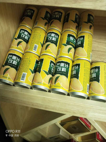 韩国进口饮料 乐天芒果汁葡萄橙汁牛奶碳酸饮料可乐组合装 夏日饮料饮品休闲零食品 石榴汁180ml*15瓶 晒单图