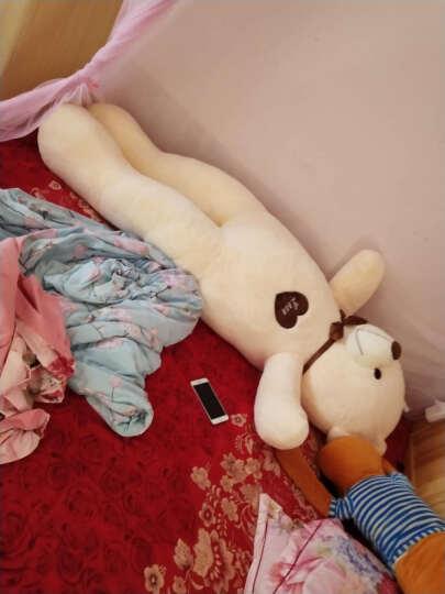 陪伴大号泰迪熊公仔抱枕抱抱熊毛绒玩具布娃娃大熊猫玩偶狗熊丝带熊生日礼物送女生女孩 深棕色款-丝带熊(送仿真玫瑰) 1.2米 晒单图