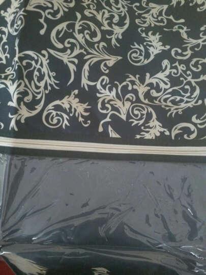 西文 衣服防尘罩 防尘袋 大衣罩 西装罩 可水洗 A款 樱桃红 L(60*120CM) 晒单图