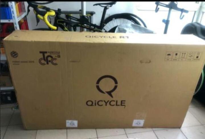 骑记(R) QICYC骑记R1C公路自行车碳纤维超轻22速骑记力量车队版公路车环法标准专业公路自行车 车队版涂装 晒单图