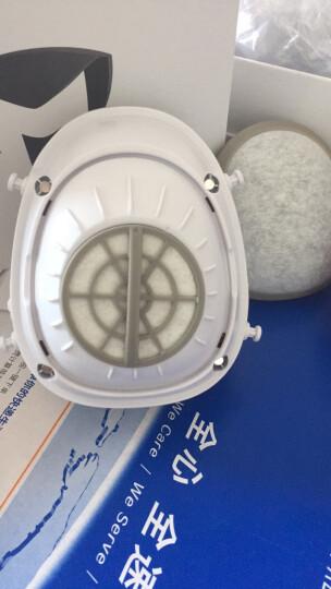 迈盾(MAIDUN) 防雾霾pm2.5甲醛口罩活性炭防霾电动送风智能儿童电子防尘孕妇口罩防尘易呼 成人款-206蓝+3片滤芯(防甲醛升级款) 晒单图