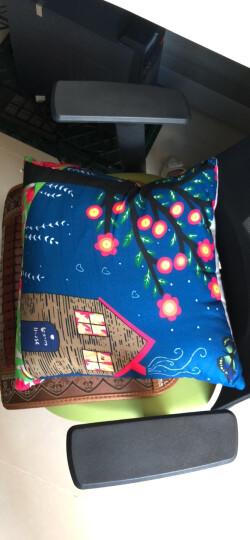 九洲鹿家纺 卡通抱枕沙发靠垫办公室靠枕床头靠背汽车护腰靠垫腰枕垫 含芯 幸福家园 45x45cm 晒单图