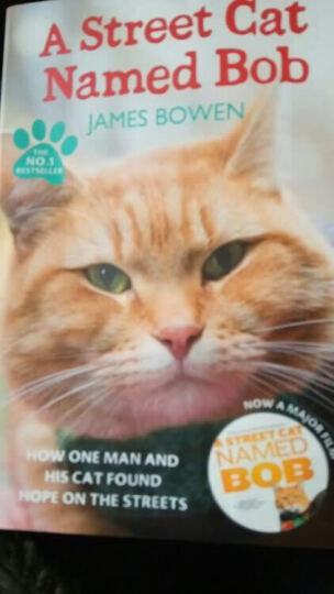 现货 一只名叫鲍勃的流浪猫 英文原版小说书 A Street Cat Named Bob  晒单图