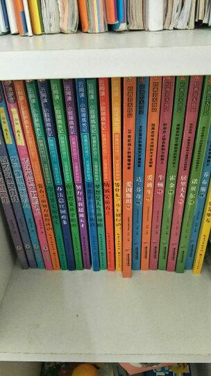 森林报全4册 春夏秋冬四季 7-12岁儿童科普故事书 三四五六年级小学生课外书读物 晒单图
