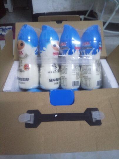 小洋人 酸奶饮品妙恋发酵型乳酸菌儿童牛奶奶制品乳饮料 230ml*16瓶/箱 原味 晒单图