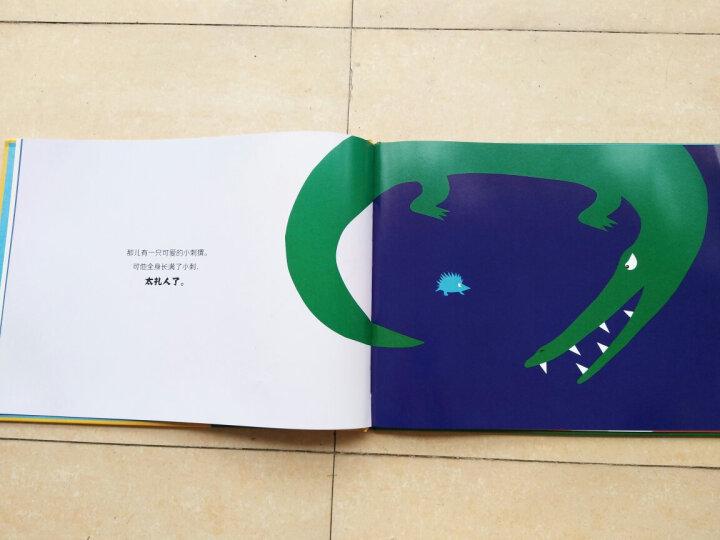 暖绘本:折耳兔奇奇中英文双语(精装共4册) 晒单图