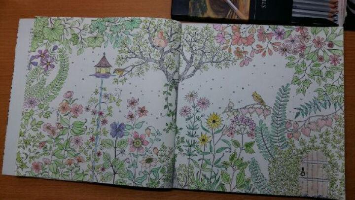 秘密花园+魔法森林 套装共2册 手绘涂色书 韩国secret garden减压涂鸦填色本 晒单图