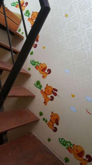 缔卡(dktie) 新欢乐狗可移除PVC走廊楼梯装饰创意踢脚线墙贴花贴纸贴画地脚线 新欢乐狗 大 晒单图