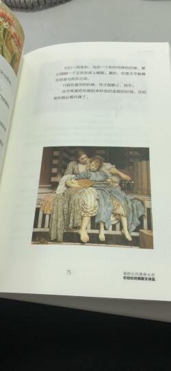 我的心只悲伤七次:纪伯伦经典散文诗选 晒单图